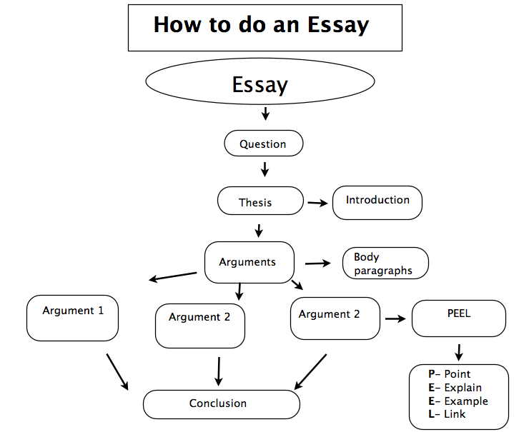 college essays college application essays visual learner essay visual learner essay